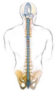 terapia sacro-craneal